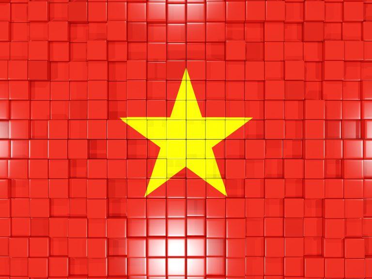 ベトナムの企業とのネットワークを生かした調査