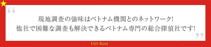 ベトナム機関とのネットワーク